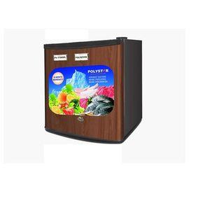 Polystar Portable Bedside Refrigerator PV-TT80WL