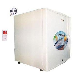 Restpoint Single-Door BEDSIDE Refrigerator RP-60+ FREE SURGE
